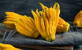Citrus-Plant-For-Vastu