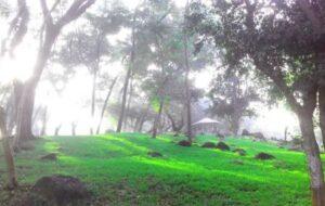 Belapur Garden Mumbai